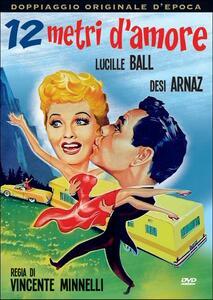 Dodici metri d'amore di Vincente Minnelli - DVD