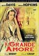 Cover Dvd Il grande amore