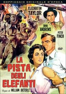La pista degli elefanti di William Dieterle - DVD