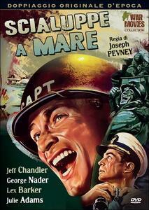 Scialuppe a mare di Joseph Pevney - DVD