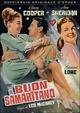 Cover Dvd DVD Il buon samaritano