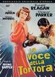 Cover Dvd La voce della tortora