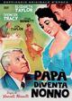 Cover Dvd DVD Papà diventa nonno