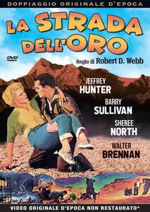 La strada dell'oro (DVD) di Robert D. Webb - DVD