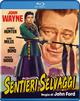 Cover Dvd DVD Sentieri selvaggi