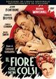 Cover Dvd DVD Il fiore che non colsi