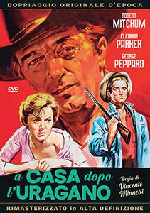 Film casa dopo l'uragano (DVD) Vincente Minnelli