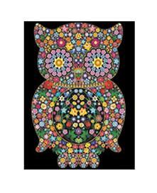 Colorvelvet L084 Disegno 47X35 Cm Gufo Fiori
