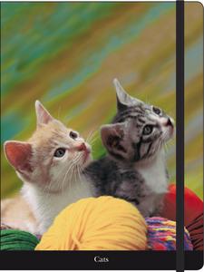 Cartoleria Notebook con elastico Gatti europei Cartilia