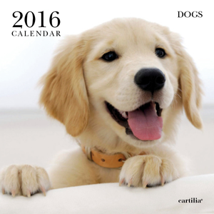Cartoleria Calendario da parete 30x30 2016: Dogs Cartilia