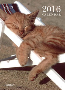Cartoleria Calendario da parete 24x33 2016: Cats Cartilia