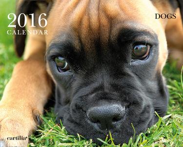 Cartoleria Calendario da tavolo 20x16 2016: Dogs Cartilia