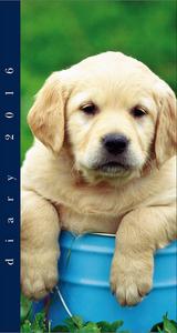 Cartoleria Agenda 12 mesi settimanale 2016: Dogs Cartilia