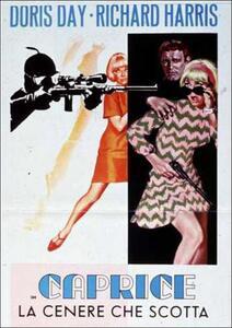 Caprice, la cenere che scotta di Frank Tashlin - DVD