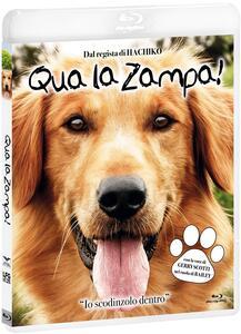 Film Qua la zampa! (Blu-ray) Lasse Hällstrom