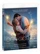 Cover Dvd DVD Ogni Giorno