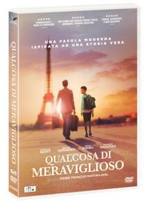 Qualcosa di meraviglioso (DVD) di Pierre-François Martin-Laval - DVD