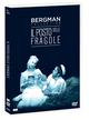 Cover Dvd DVD Il posto delle fragole