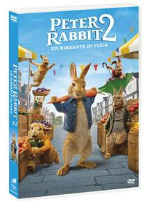 Film Peter Rabbit 2. Un birbante in fuga (DVD) Will Gluck