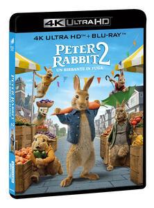 Film Peter Rabbit 2. Un birbante in fuga (Blu-ray + Blu-ray Ultra HD 4K) Will Gluck