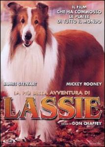 La più bella avventura di Lassie di Don Chaffey - DVD