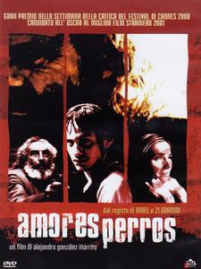 Amores perros di Alejandro González Iñárritu - DVD