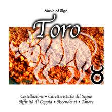 Toro - CD Audio