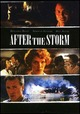 Cover Dvd DVD After the Storm