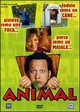 Cover Dvd DVD Animal