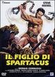 Cover Dvd DVD Il figlio di Spartacus