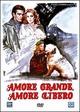 Cover Dvd Amore grande, amore libero