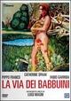 Cover Dvd DVD La via dei babbuini