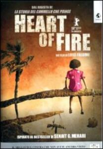 Heart of Fire di Luigi Falorni - DVD