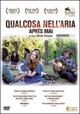 Cover Dvd Qualcosa nell'aria