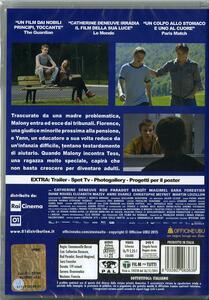 A testa alta di Emmanuelle Bercot - DVD - 2