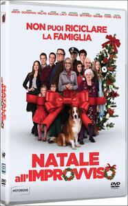 Natale all'improvviso di Jessie Nelson - DVD