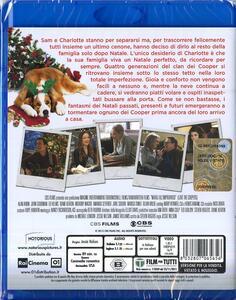 Natale all'improvviso di Jessie Nelson - Blu-ray - 2