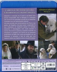 Belle & Sebastien Amici per sempre (Blu-ray) di Clovis Cornillac - Blu-ray - 2