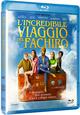 Cover Dvd DVD L'Incredibile Viaggio del Fachiro