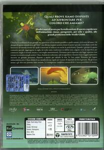 Big Fish & Begonia (DVD) di Liang Xuan,Zhang Chun - DVD - 2