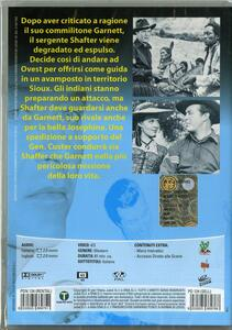 Squilli al tramonto di Roy Rowland - DVD - 2