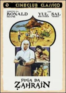 Fuga da Zahrain di Ronald Neame - DVD