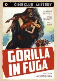 Locandina Gorilla in fuga