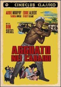 Cover Dvd Agguato nei Caraibi (DVD)