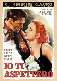 Cover Dvd Io ti aspetterò (DVD)