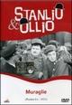 Cover Dvd DVD Muraglie