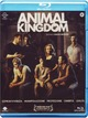 Cover Dvd Animal Kingdom