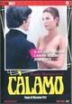 Cover Dvd DVD Càlamo