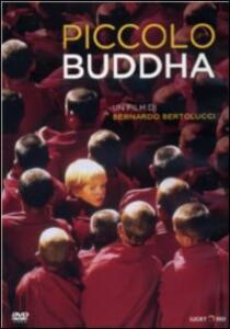 Piccolo Buddha di Bernardo Bertolucci - DVD