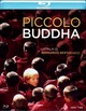 Cover Dvd DVD Piccolo Buddha
